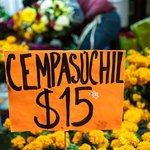 Фотография Xochimilco