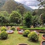Foto de Jardim dos Pinhais Ecco Parque