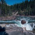 Photo of Sunwapta Falls and Canyon