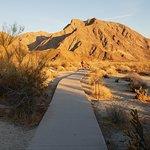 Foto Anza-Borrego Desert State Park