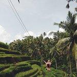 Bild från Tegalalang Rice Terrace