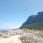 Bild från L'Area Naturale Marina Protetta Tavolara - Punta Coda Cavallo