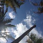 Photo of Tulum Diving & Travel