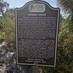 Caladesi Island State Parkの写真