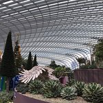 Gardens by the Bay Photo