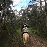 Thredbo Valley Horse Riding Foto