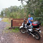 صورة فوتوغرافية لـ Kauai Mopeds