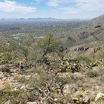Photo de Sabino Canyon