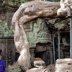 Фотография Angkor Archaeological Park