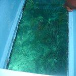 Nylon Pool의 사진