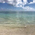 Foto de Akumal Beach