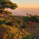 Shigu Ridge of Sanqing Mountain의 사진