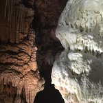 Bild från Postojna Caves
