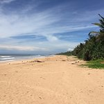 Photo of Bentota Beach