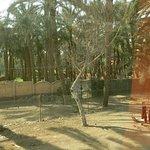 Photo of Dahshur