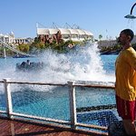 Фотография The Land of Legends Theme Park