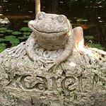 Foto de Xcaret Park