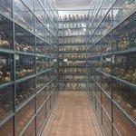 Foto de Museu Larco