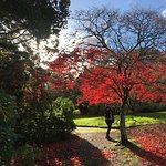 Foto Plas Newydd Country House and Gardens