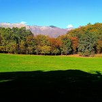 Photo de Parco Naturalistico di San Floriano