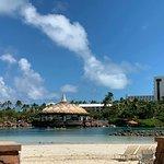 Foto de Parque Aquático Aquaventure de Atlantis Paradise Island