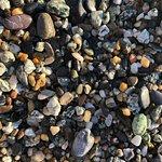 Levanto Beach의 사진