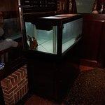 Foto van Pappadeaux Seafood Kitchen