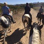 Foto van Wine Country Trails by Horseback
