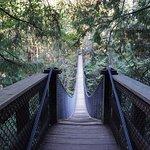 Billede af Lynn Canyon Suspension Bridge