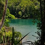Photo of Lake Eacham Crater Lakes National Park