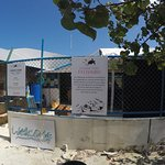 Atoll Marine Center