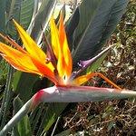 Valokuva: Lauritzen Gardens Omaha's Botanical Center