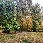 Photo of Retiro Park