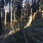 Фотография Kampenwand