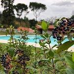 Photo of Vidago Palace Golf
