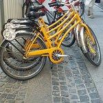 Photo of Yellow Zebra Bike and Segway Tours and Rentals