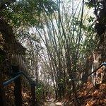 Фотография Santuario Ecologico de Pipa
