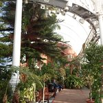 Foto de People's Palace and Winter Gardens