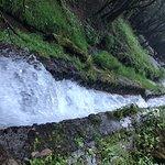 Bilde fra Parque Ecoturistico Dos Aguas