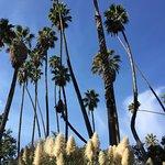صورة فوتوغرافية لـ Los Angeles County Arboretum & Botanic Garden