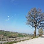 Photo de Strada Romantica delle Langhe e il Roero