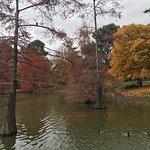 Foto van Parque del Buen Retiro