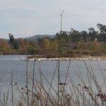 Φωτογραφία: San Joaquin Wildlife Santuary
