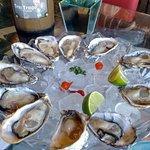Foto di Ostradamus Bar e Restaurante