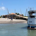 Algodoal Island Foto