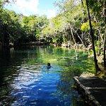 Foto de Planet Scuba Mexico