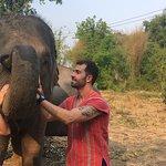Фотография Elephant Nature Lovers Park