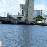 Catamaran Toursの写真