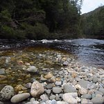 On a Water by Nature trip on the Franklin River, Tasmania