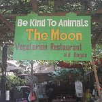 Be Kind to Animals The Moon Foto